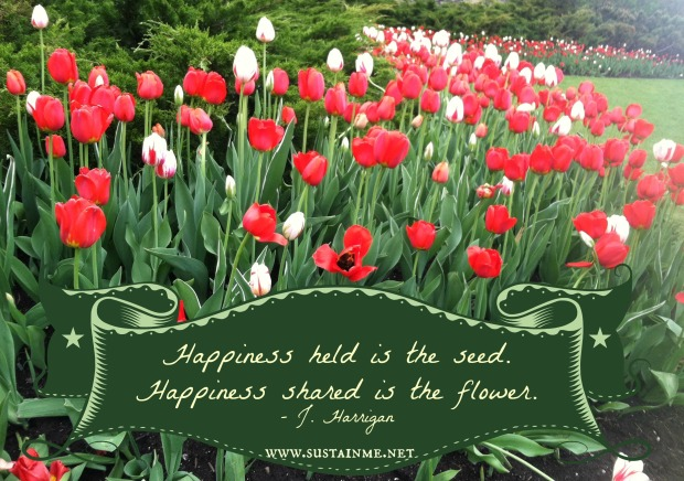 tulip festival canada happiness quotes about happiness
