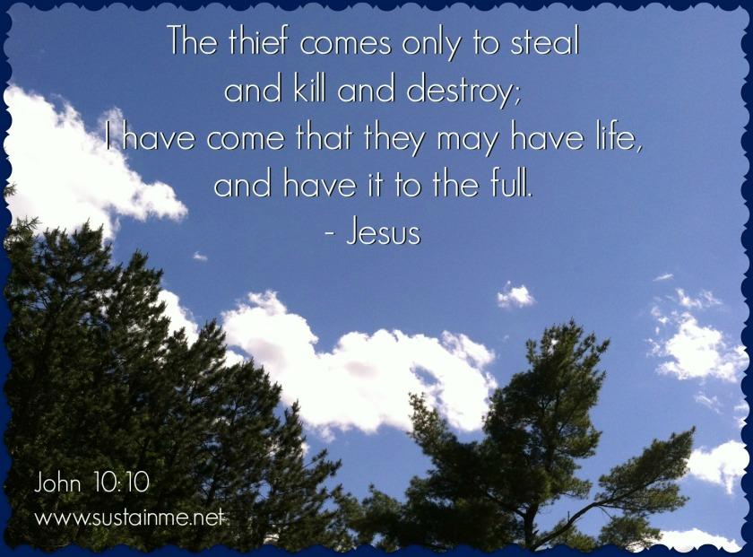 john 10:10 life more abundantly